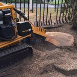 Stump removal by Springfield Tree Services