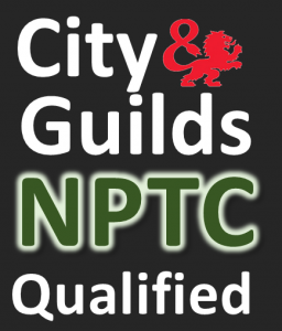 Springfield Tree Services City and Guilds Tree Surgeon