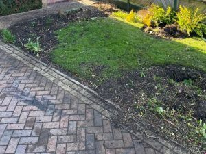 Shrubs removed - Springfield Tree Services