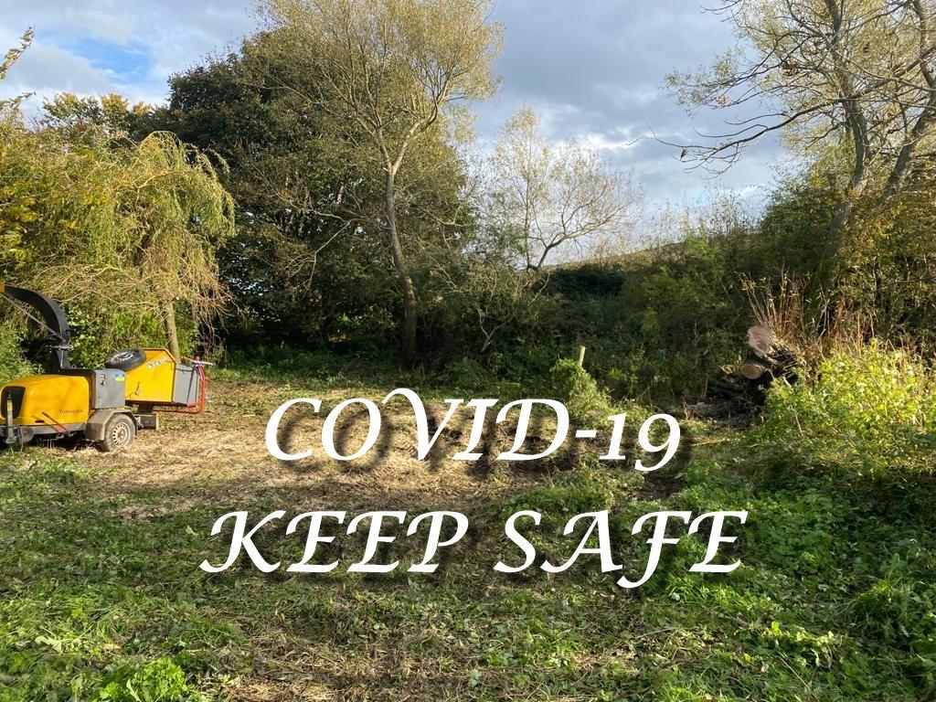 Springfield Tree Services - COVID-19