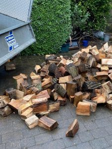 Springfield Yuletide Logs