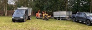 Springfield Tree Services remove damaged ash tree